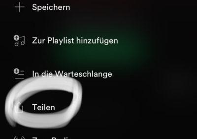 Songs von Spotify in der Insta Story teilen