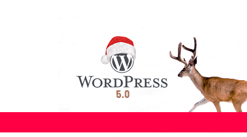WordPress 5.0 – Neue Version zum Nikolaus