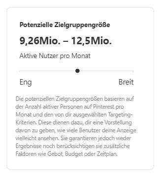 Screenshot von Pinterest mit der Anzeige der potenziellen Zielgruppengröße